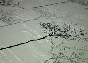 puu ja teksti verhokangas
