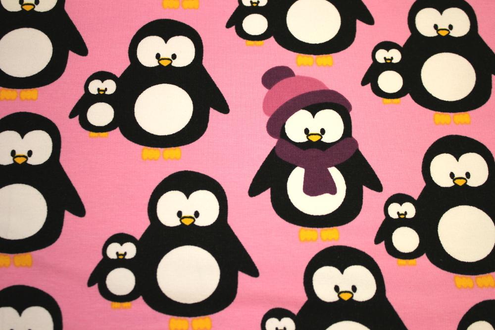 pingviini college
